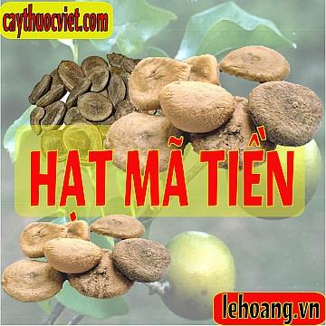 hat-ma-tien (215)